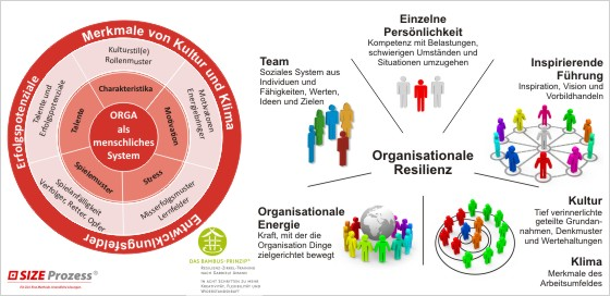 SIZE Prozess Resilienz _organisationale Resilienz